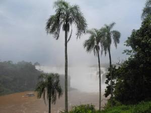 Iguazu_005_DSCN8452