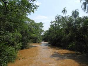 Iguazu_039_DSCN8652