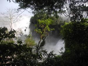 Iguazu_047_DSCN8700