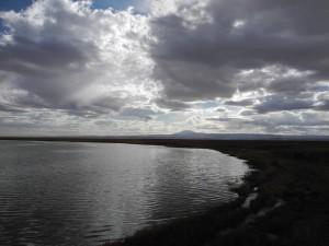 Laguna-Cejar_002_DSCN8804