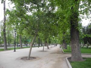 Santiago_047_DSCN6702