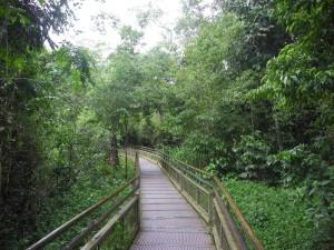 Iguazu_017_DSCN8400