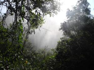 Iguazu_043_DSCN8677