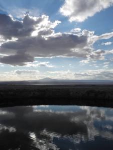 Laguna-Cejar_005_DSCN8822